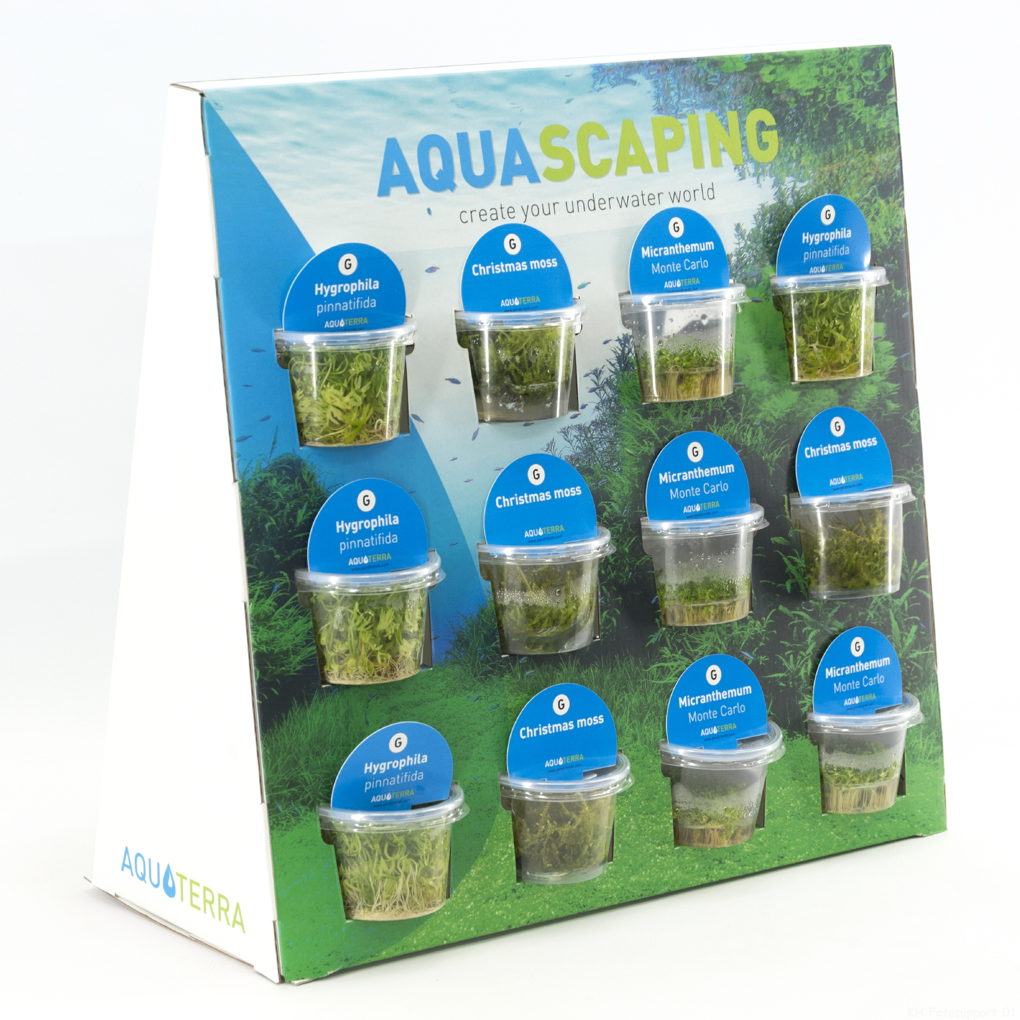 Aquascaping Display 20180320115600