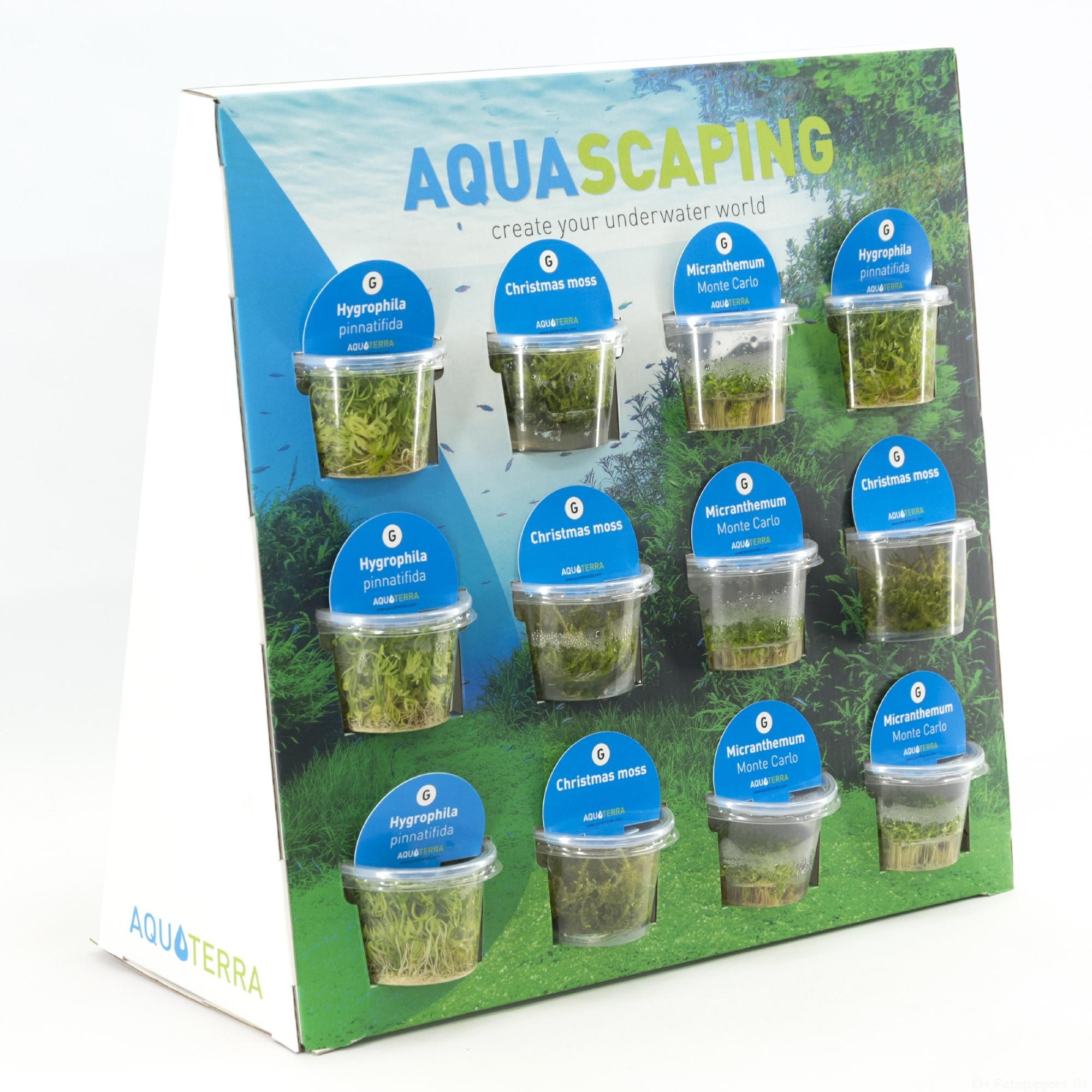 Aquascaping Display 20180320115600